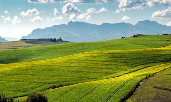 Green fields with mountains in the background