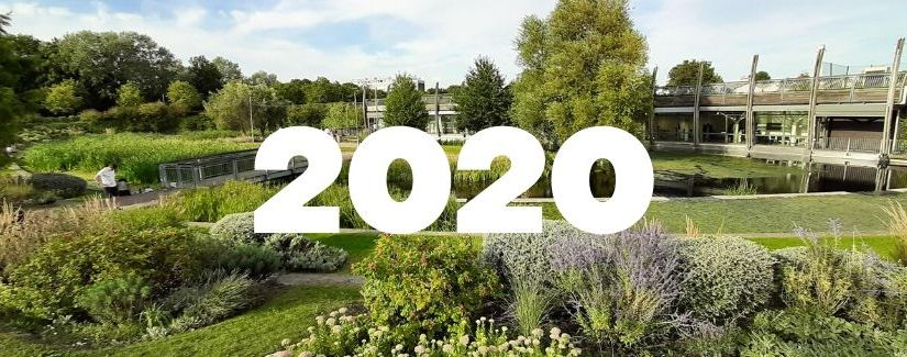 20 things to look forward to in 2020