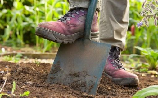 Grunt Work Gardening
