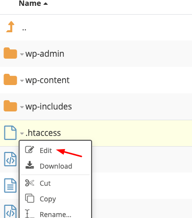 File Manager htaccess edit