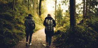 2 mensen wandelen in het bos