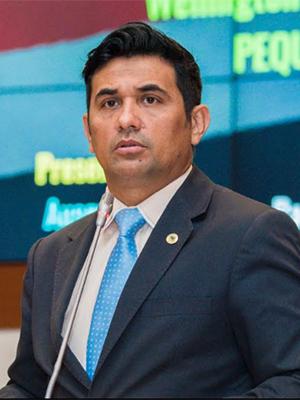 Deputado estadual Wellington do Curso (PP)