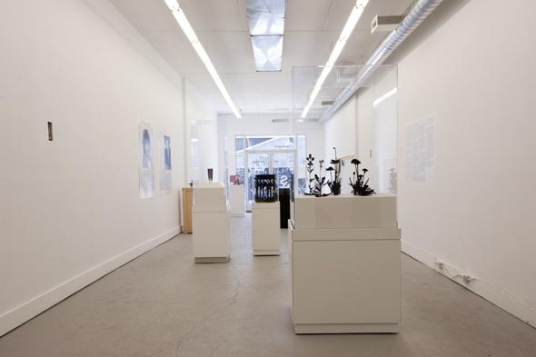 g gallery toronto