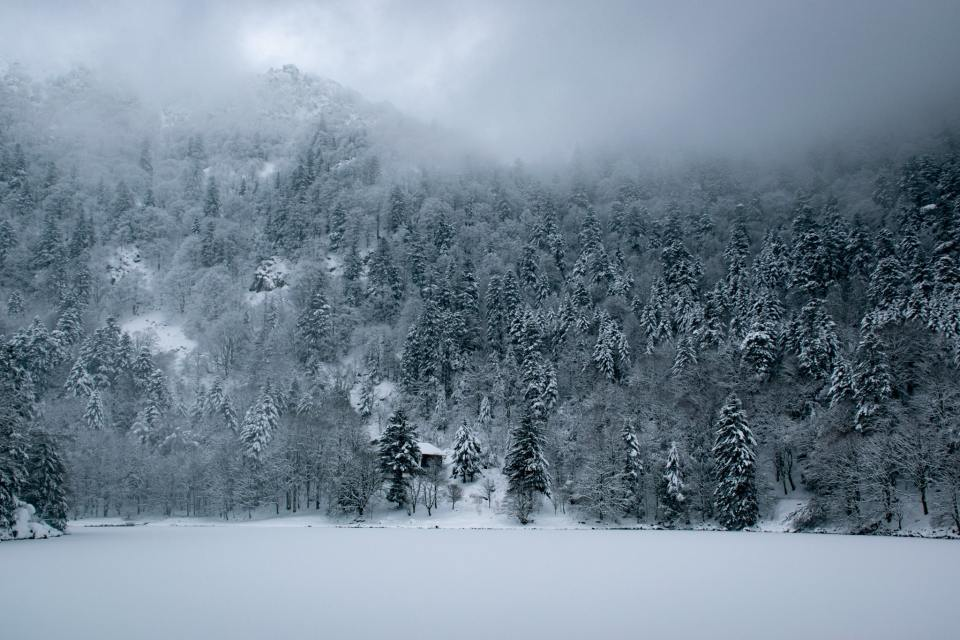 Rando raquettes dans les Vosges