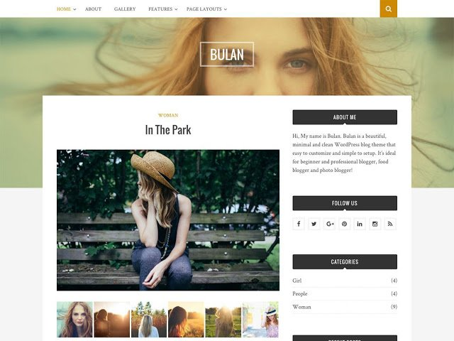 WORDPRESS THEMES WITH ROMOVEABLE FOOTER CREDIT