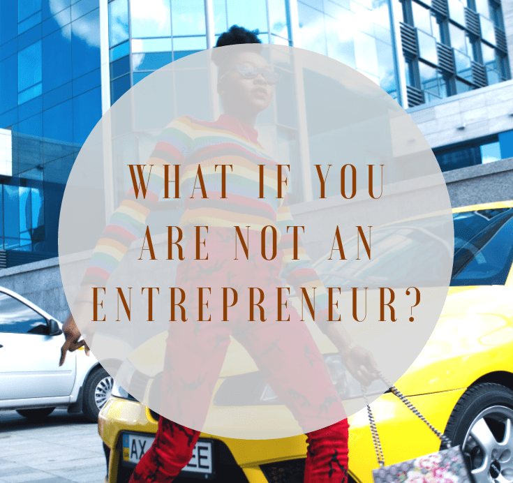 I am not an entrepreneur