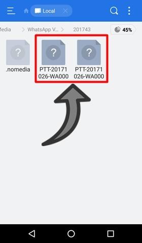 Onde fica o audio WhatsApp