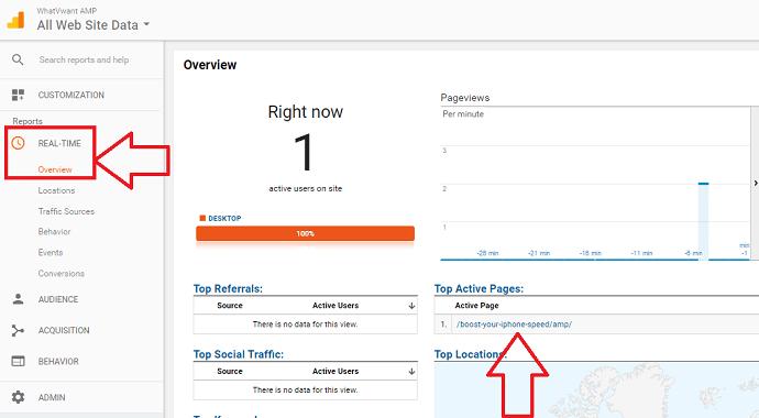 amp analytics verification
