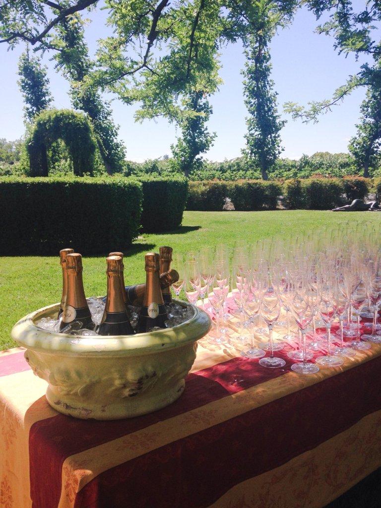 Wine Wednesday: Peju Provence