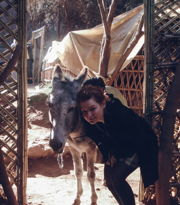 morocco donkey girl village