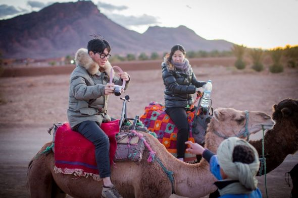 camels, desert, morocco, people, sand, ride