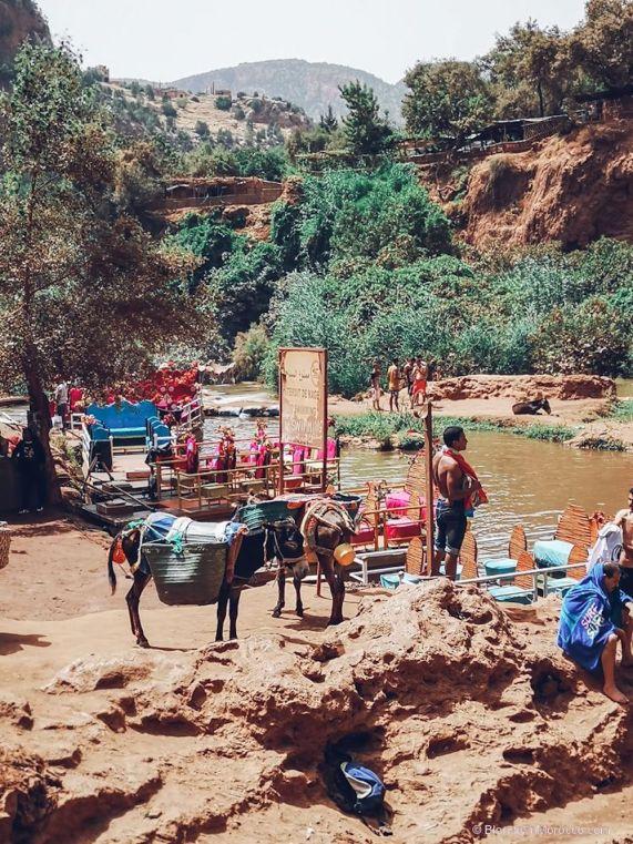 ouzoud waterfall morocco14