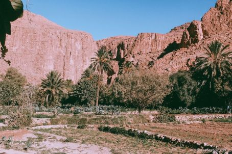 Todgha-gorge-morocco3