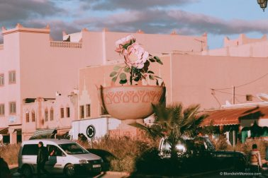 rose-valley-morocco