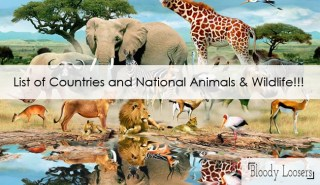 List of Countries and Their National Animals & Wildlife
