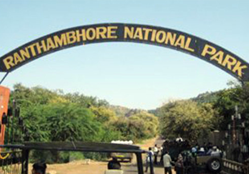 Ranthambore National Park - See Tigers in India