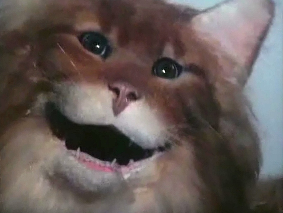 Uninvited is the Pinnacle of B Horror Movie Kitty Shenanigans
