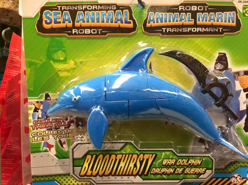 war dolphin