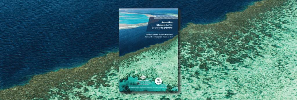 Ocean acidification information paper