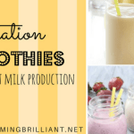 Lactation Smoothies