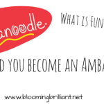 What is Fundanoodle?