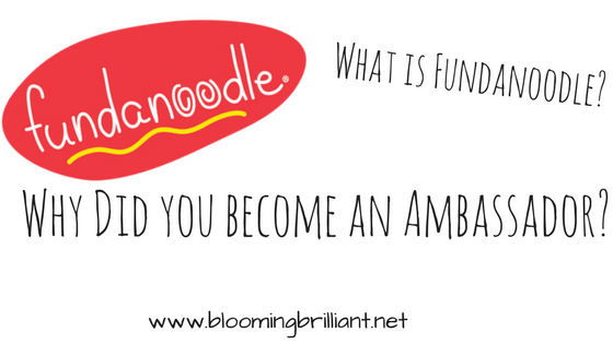 What is Fundanoodle? Learn more about this amazing Educational Resource company that helps children develop and improve their motor skills.