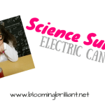 Science Sunday- Electric Can