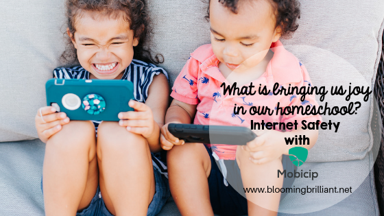 Internet Safety with Mobicip