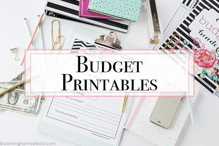 Budget Binder Free 2019 Printables