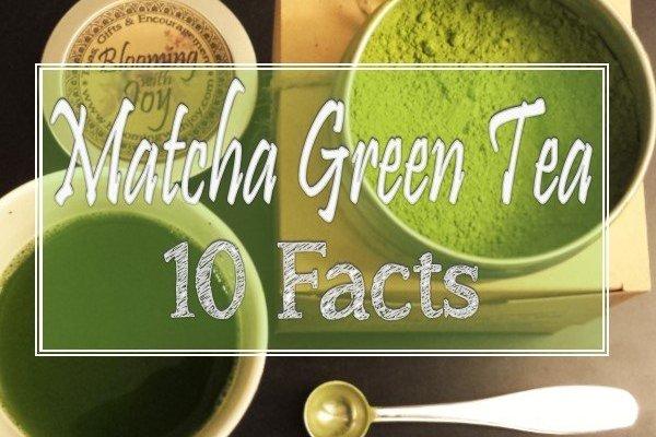 It is here! We've Gotcha Matcha Green Tea!