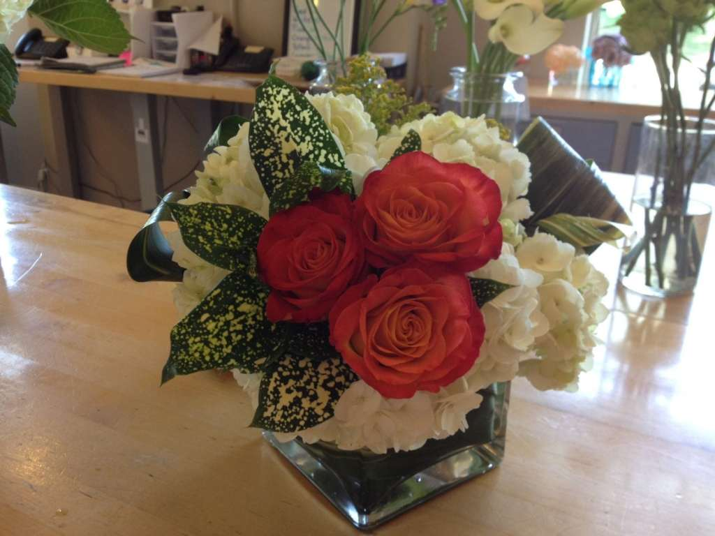 Hydrangea, roses and tropical greens in 4 in opening container