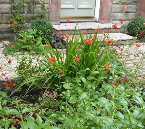 Front_garden_planting_scheme
