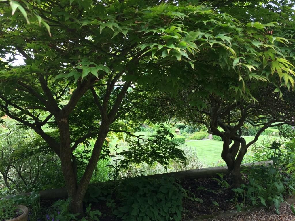 Garden views East Lothian