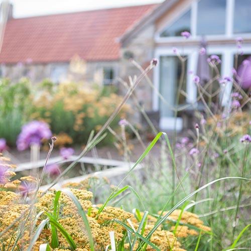 Blossoming Gardens Garden Design Portfolio