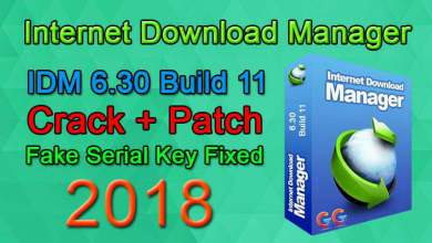 IDM 6.30 Build 11 incl Patch [32bit + 64bit] Fake Serial Fixed (GoogleGangs