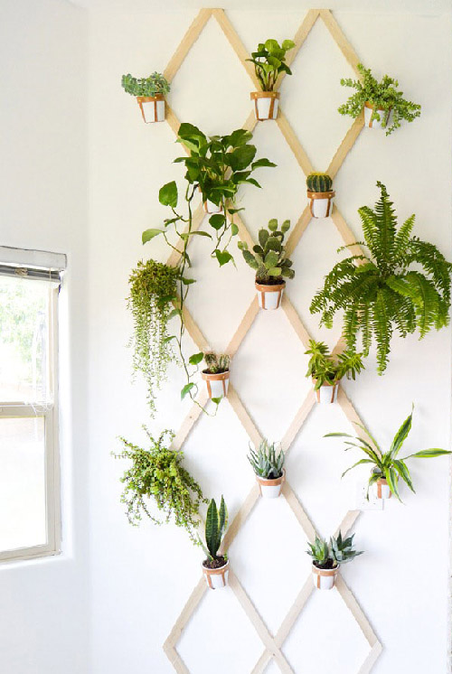 Elegant Indoor Garden Ideas