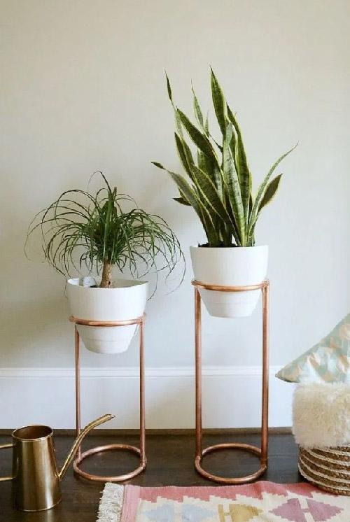 Unique Plant Stand Ideas