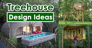 Best Treehouse Design Ideas