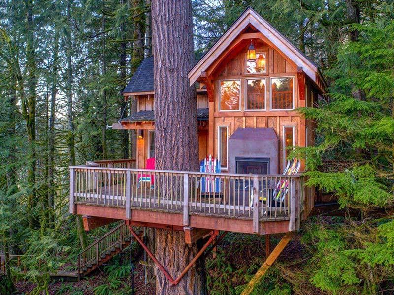 Beautifull Amazing Tree House Style