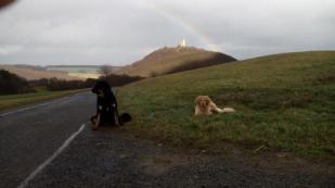 Regenbogen über der Burgruine Olbrück