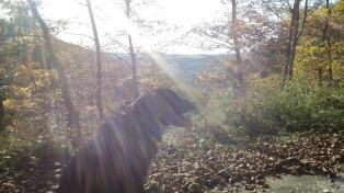 Sieben Stunden Sonne heute und das am 1. November