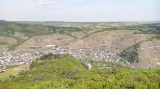 Blick vom Krausberg auf Dernau