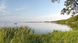 Blick vom Südufer Richtung Steinhude
