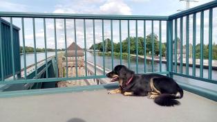 Aussichtsplattform an der Kanalbrücke