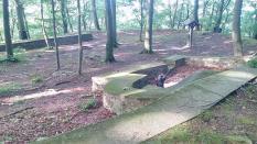 Reste der alten Frankenburg auf dem Kamm des Wesergebirges