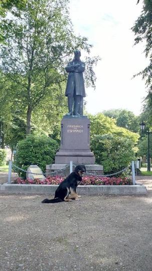 Ein großer Sohn der Stadt: Friedrich von Esmarch (1823–1908), Arzt, Chirurg und Erfinder des Eisbeutels