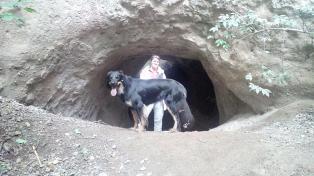 Der Wanderweg führt durch die mannshohen Trassenhöhlen