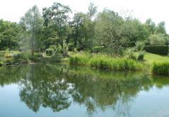 Teich im Bürgerpark