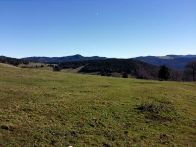 Blick über die Höhen des südlichen Schwarzwaldes