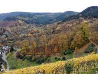 Blick in die angrenzenden Berge von Schloss Eberstein